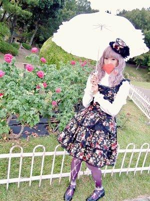 hicholi_san's photo (2016/11/04)